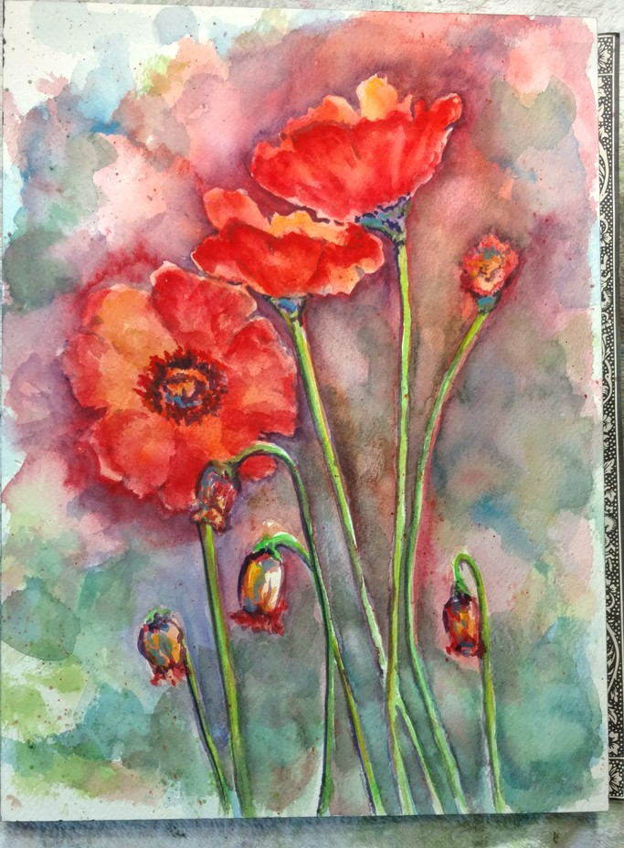 Poppies Sketch-July 2018